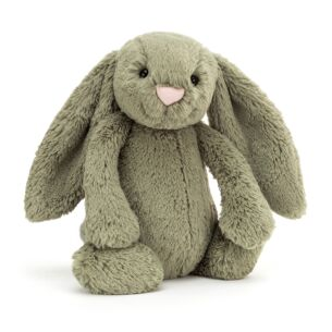 Medium Bashful Fern Bunny