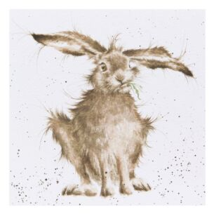 'Hare-Brained' Hare Card