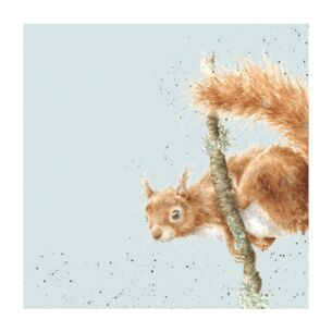 'The Acrobat' Squirrel Set of 20 Napkins