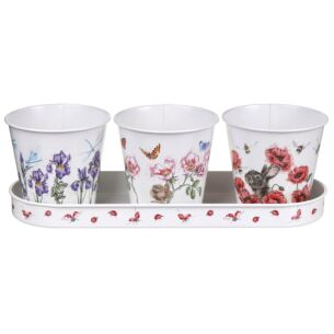 Floral Herb Pots and Tray