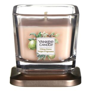 Citrus Grove Small Elevation Candle